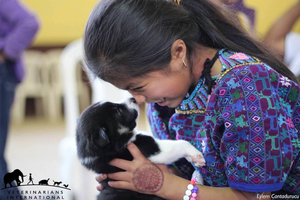 puppyloveguatemala